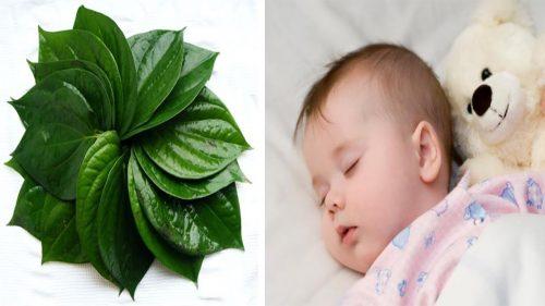 Chữa hăm tã bằng lá trầu hiệu quả giúp trẻ dễ chịu (Nguồn: kemembe.com)